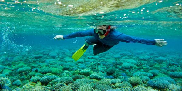 worldoceanday_coral_diver