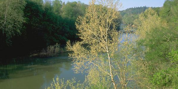 Bendick_cahaba_river