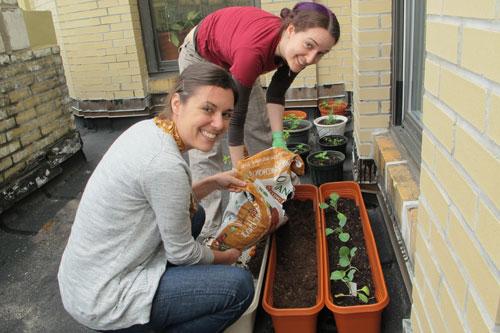 Our New York City team tends to their urban garden
