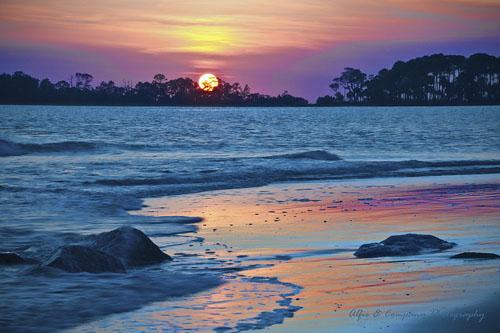 Nature Photo of the Week: Tybee Island, GA