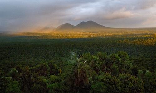 The Gondwana Link region of southwestern Australia