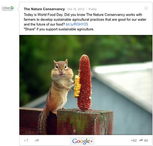 Top Google+ Post